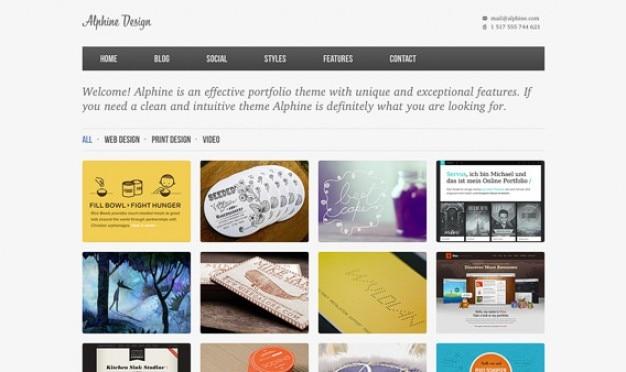 Alphine homepage psd