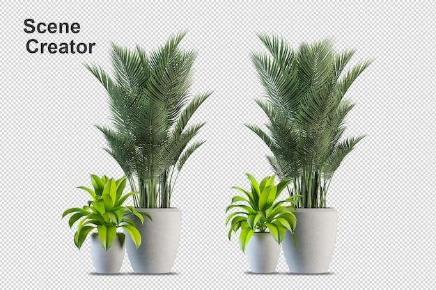 Anordnung verschiedener bäume und gräser