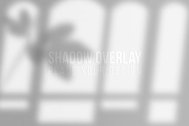 Blätter shadows overlay und fenster shadows overlay effekt transparentes konzept