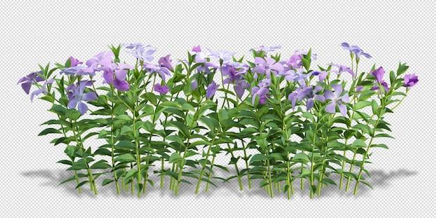 Blumen des vasenmodells im 3d-rendering isoliert