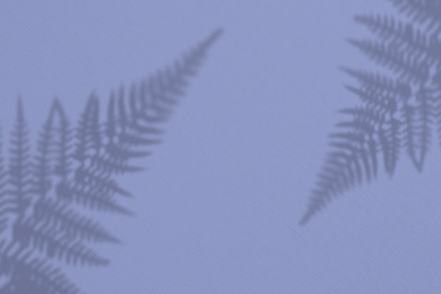 Der schatten einer exotischen wildpflanze auf einer weißen wand.