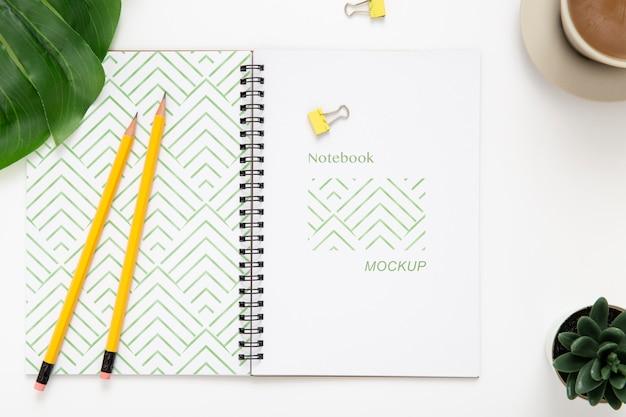 Draufsicht auf schreibtischoberfläche mit notebook und sukkulente