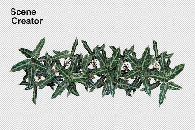 Draufsicht-blumenkorb im 3d-rendering