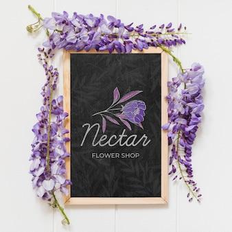 Draufsicht schöne lila blumen