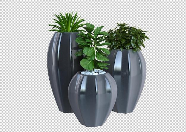 Drei verschiedene pflanzen 3d-rendering