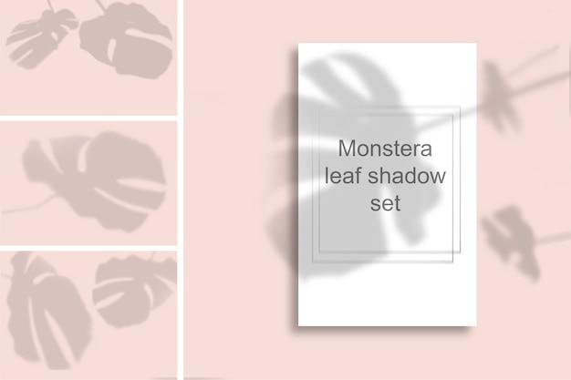 Eine reihe von monstera blatt schatten auf einer rosa wand. schwarzweissommer für fotoüberlagerung oder -layout.