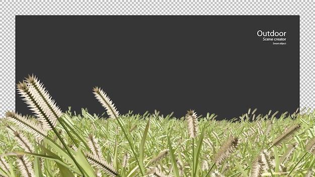 Eine windgepeitschte wildwiese kleineres katzenschwanzfeld