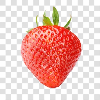 Einzelne geschichtete psd-datei mit frischen roten erdbeeren