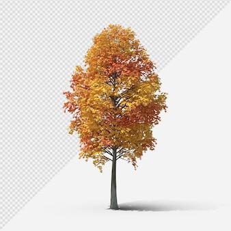 Fallbaum isolierte darstellung mit schatten dritter form