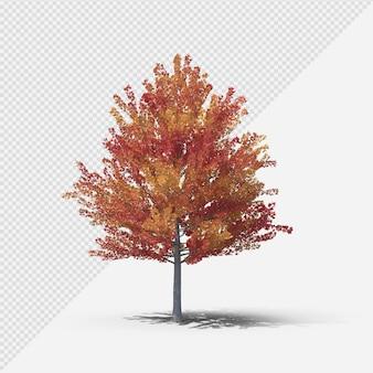 Fallbaum isolierte darstellung mit schatten zweiter form