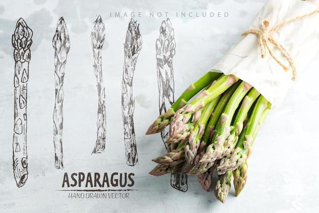 Frisch gepflückte vertikale stehende rohe organische lila spargelbündel zum kochen gesunder vegetarischer diätnahrung gegen steinoberflächenkopierraum veganes konzept Premium PSD