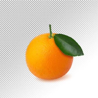 Frische orangenfrucht isoliert