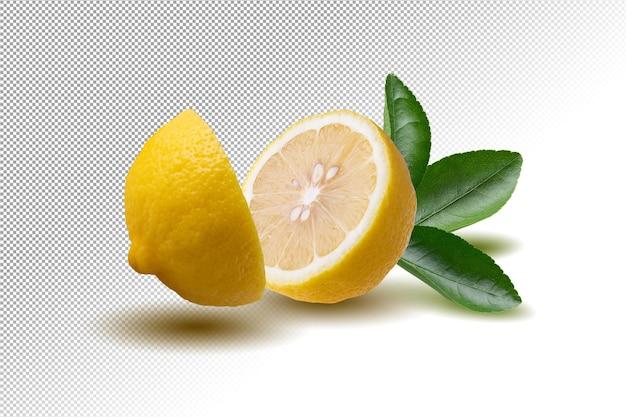 Frische zitronenfrucht isoliert
