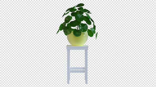 Gelber topf und kleine zimmerpflanze