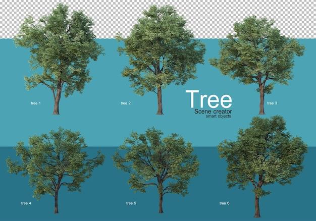 Große bäume in verschiedenen formen