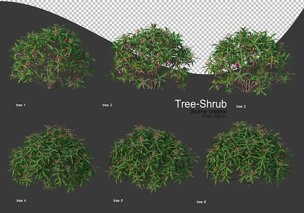 Große vielfalt an bäumen und sträuchern rendering