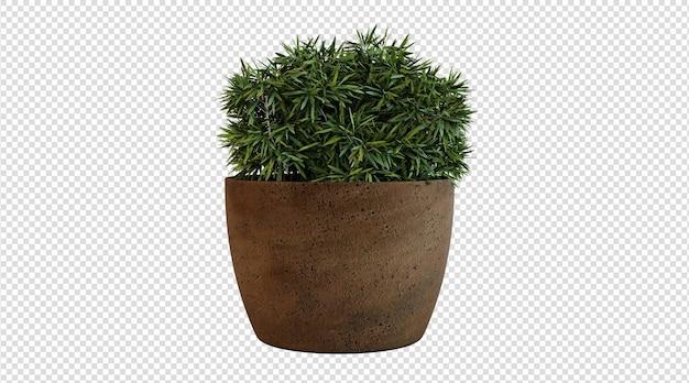 Grüne pflanze in brauner topfpflanze 3d-rendering