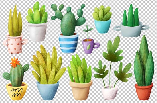 Heimpflanzen