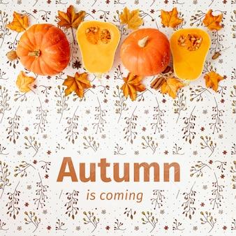 Herbst kommt konzept mit hälften des kürbises