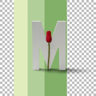 Isolierter brief mit roter rose