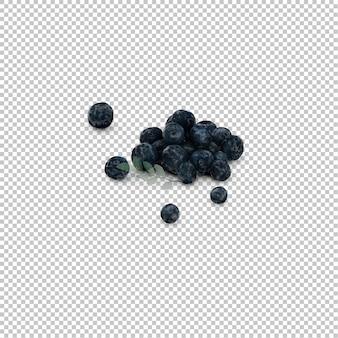 Isometrische blaubeeren