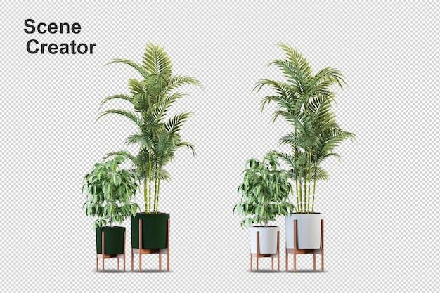 Isometrische pflanzen im topf 3d rendering isoliert