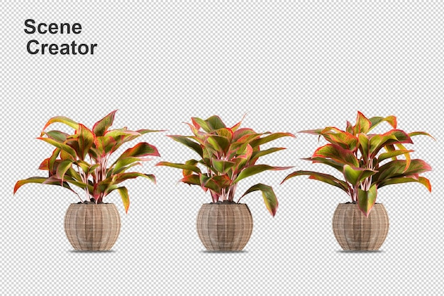 Isometrische pflanzen im topf 3d-rendering