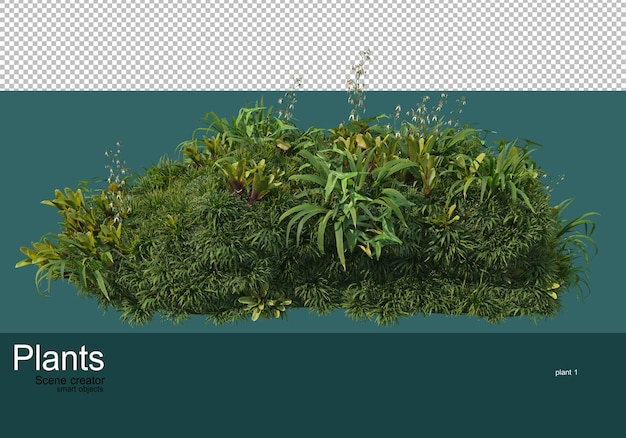 Kleiner garten mit vielen pflanzen