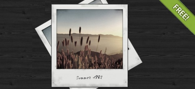 Kostenlose psd polaroid photo frame