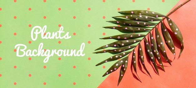 Künstlerische zeichnung auf naturpflanzen