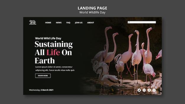 Landingpage zum welttag der wildtiere