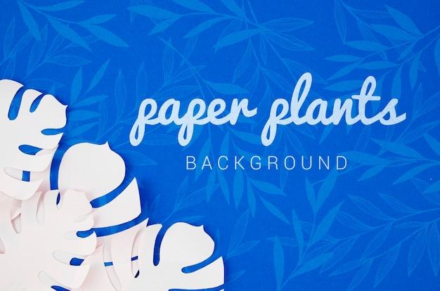 Monstera-papierpflanze verlässt hintergrund mit schatten