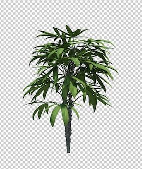 Naturobjekt-buschbaum lokalisierten weißen hintergrund