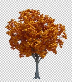 Naturobjektbaum lokalisierte weißen hintergrund Premium PSD