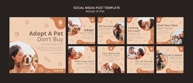 Nehmen sie die social-media-post-vorlage für haustiere an