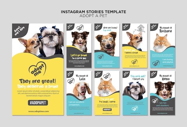 Nehmen sie eine haustier-instagram-geschichtenvorlage an