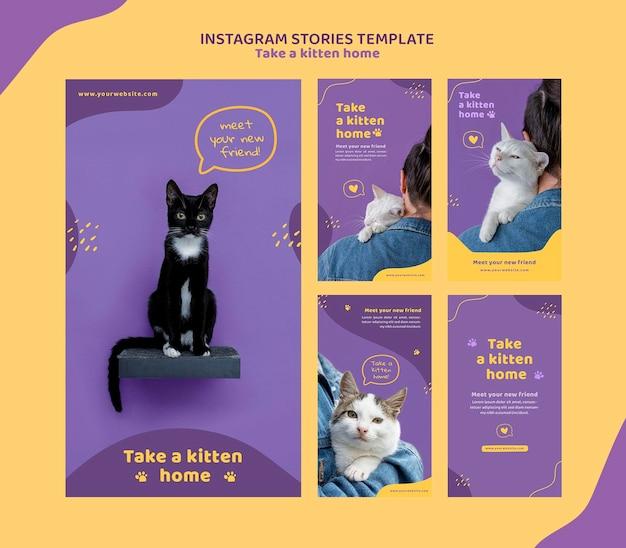 Nehmen sie eine kätzchen-instagram-geschichtenschablone an
