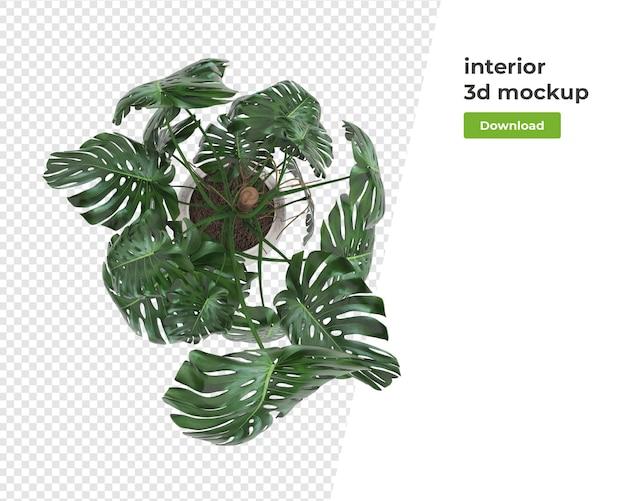 Pflanze im topf dekoration modell design