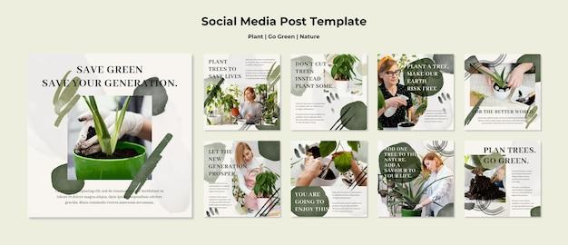 Pflanzen gehen grüne natur instagram geschichten Premium PSD