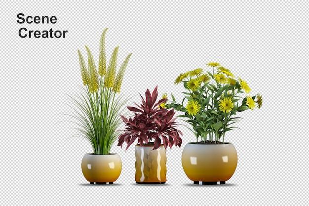 Pflanzen in töpfen in 3d isoliert gerendert