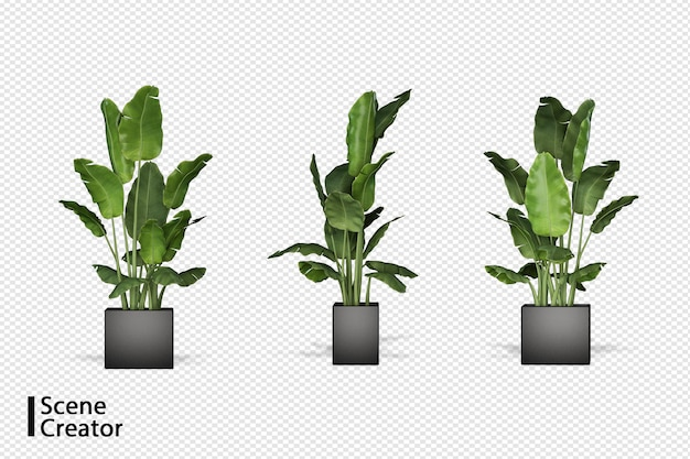 Pflanzen in verschiedenen winkeln szenenschöpfer