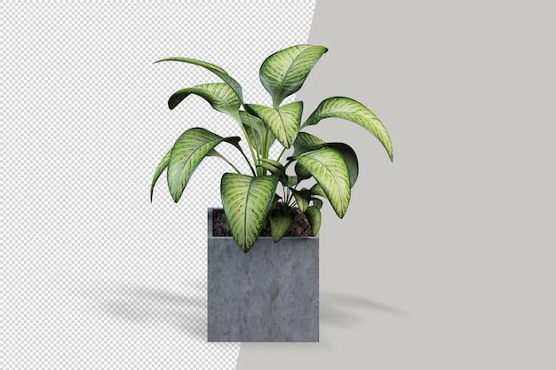 Pflanzen sie im topf im 3d-rendering