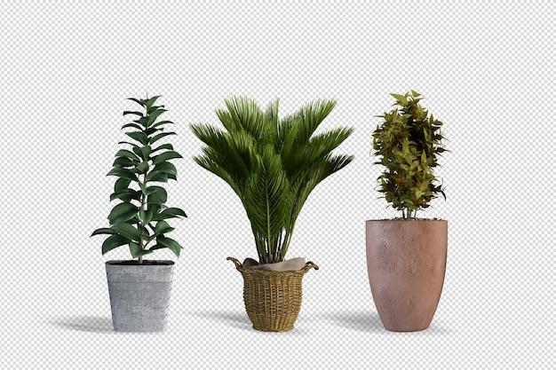 Pflanzendesign in verschiedenen winkeln, szenenersteller