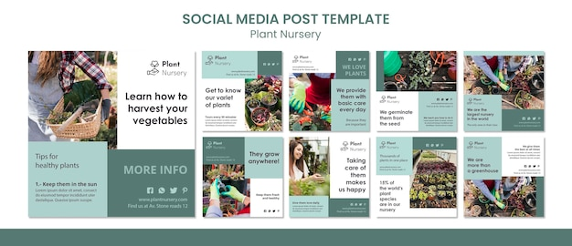 Plant nursery social media post vorlage