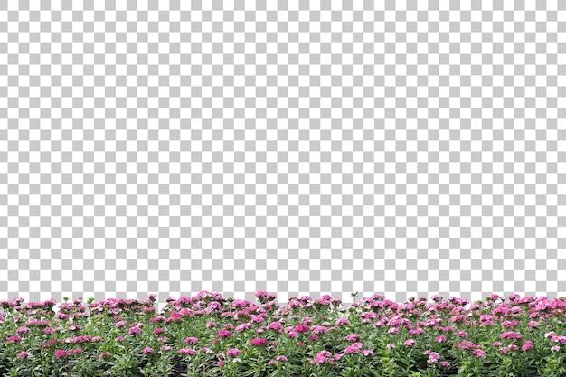 Realistische blütenpflanzen im vordergrund isoliert