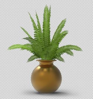 Render der isolierten pflanze. isometrische vorderansicht. transparente wand. premium 3d.