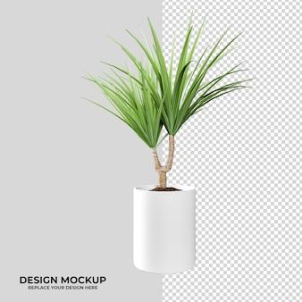 Rendering-pflanzen- und logo-modelldekoration