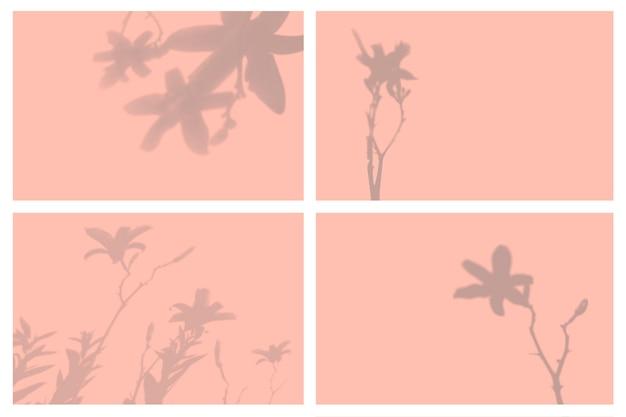 Schatten der tropischen blätter in natürlichen lichteffekten präsentationsset