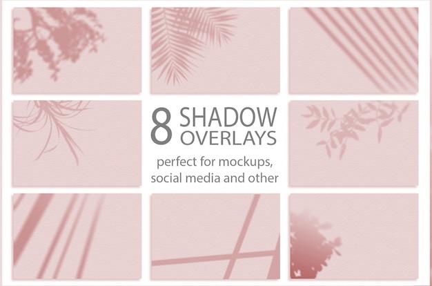 Schattenmodell. sommerhintergrund von schattenniederlassungsblättern. zum überlagern eines fotos oder modells. setze 8 schatten