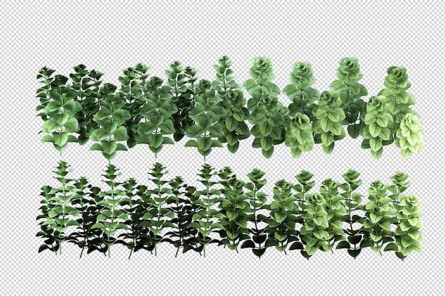 Schöne verschiedene arten von blumen in 3d-rendering isoliert
